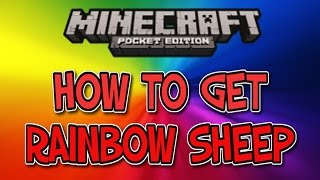 How to get Rainbow sheep in Minecraft Pocket Edition