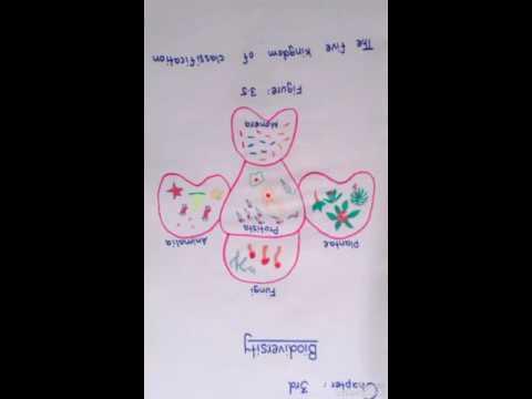 Biology 9th class practical figures
