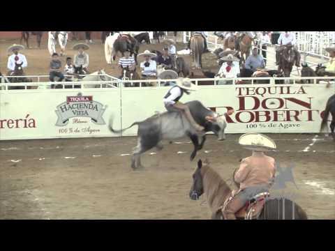 Arena Vallarta 2015 FEB 02 FINAL 1 2