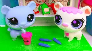 LPS Back To School Shopping Littlest Pet Shop Playing Video Bears