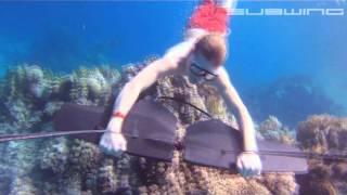 SUBWING...Flying underwater