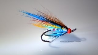 Tying a Hairwing Silver Doctor by Davie McPhail
