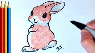 How to Draw brown bunny - Step by Step Tutorial