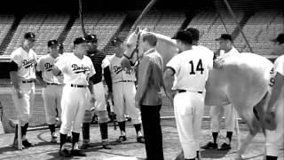 Mister Ed Plays Baseball