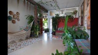 Ep 023, Part 5: 670+ PLANTS HOUSEPLANT TOUR, Living Room  (Summer 2017)