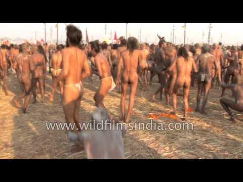 Naga sadhus attend 'Shahi Snan' or mass bathing at Kumbh Mela, Allahabad