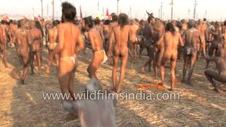 Naga sadhus attend 'Shahi Snan' or mass bathing at Kumbh Mela, Allahabad
