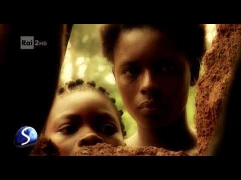 Xxx Mp4 Gregoire Che In Benin Salva I «matti» 3gp Sex