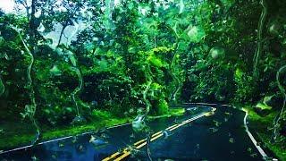 Rain Sounds While Driving | Sleep, Study, Focus | Rainstorm on Car White Noise 10 Hours