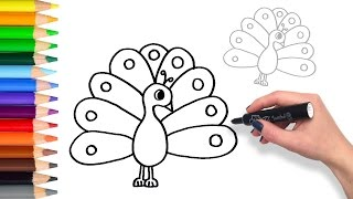 How to Draw a Colourful Peacock   Teach Drawing for Kids and Toddlers Coloring Page Video
