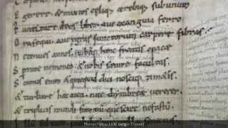 An introduction to Medieval scripts