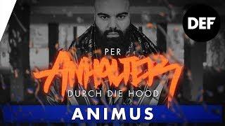 ANIMUS, Rap, Vorbilder, Jugend und Beastmode. #PADDH