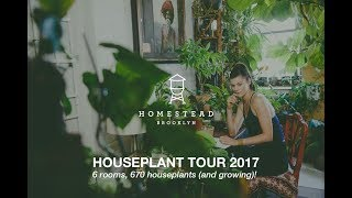 Ep 023, Part 1: 670+ PLANTS HOUSEPLANT TOUR, Intro (Summer 2017)