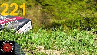 Longrange blog 221: 300 Norma Magnum in wind