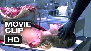 The Collection Movie CLIP - Tarantulas (2012) - Josh Stewart Movie HD