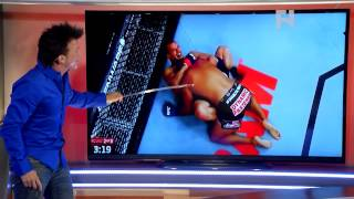 Robin's Breakdown of Anthony Hamilton's Ground and Pound at UFC 177