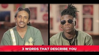 Download Haile Roots & Stonebwoy: Things you didn't know about them 3Gp Mp4