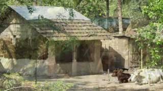 Sonar Khanchay. Bengali Folk Songs,