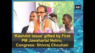 'Kashmir issue' gifted by First PM Jawaharlal Nehru, Congress: Shivraj Chouhan - Gujarat News