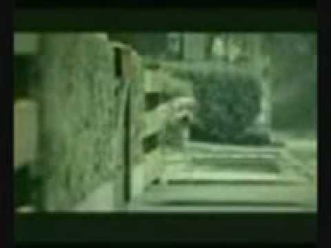 Video Diperkosa Di Depan Kekasih.3gp