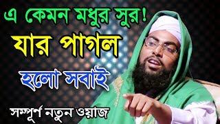 Bangla Waz 2017 এ কেমন মধুর সুর যার পাগল হলো সবাই  Maulana Tafazzal Hossain Raipuri