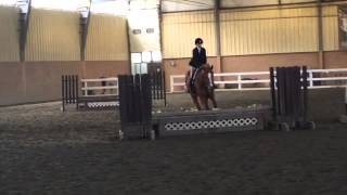 Horse show 4/26/15 with Rascal