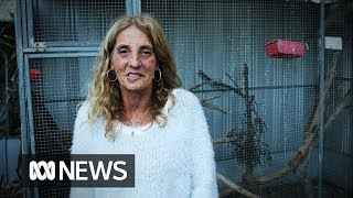 Michele Phillips: The possum lady