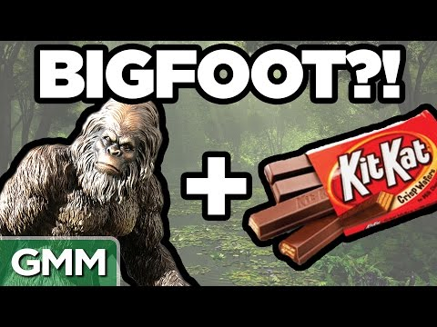 Real Bigfoot Facts GAME