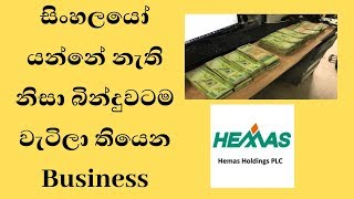 සිංහලයෝ යන්නේ නැති නිසා බින්දුවටම වැටිලා තියෙන Business Opportunities srilanka