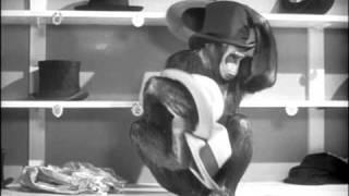 Tarzan's New York Adventure Official Trailer #1 - Virginia Grey Movie (1942) HD