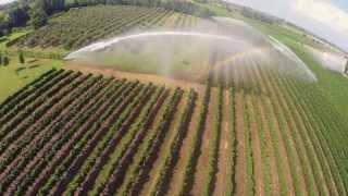 irrigazione vigneto con 3 Gemini Drone view