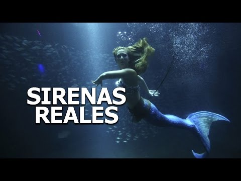 Sirenas reales captadas en video 2016