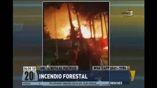 Incendio forestal en el Km. 14 de la ruta al Pacífico
