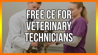 Free CE for veterinary technicians