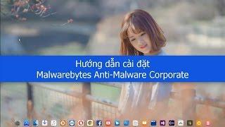Hướng dẫn cài đặt Malwarebytes Anti-Malware Corporate 1.80.2.1012