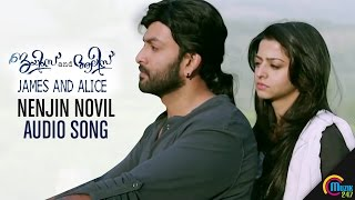 Nenjin Novil Audio Song | James and Alice| Prithviraj Sukumaran, Vedhika, Gopi Sundar | Official