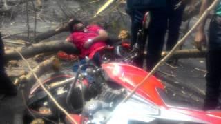 19march2017 - Zia uddan road - Rider dies after a big tree 've fallen in his head