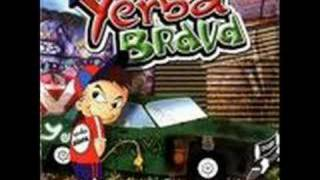 Pibe cantina - Yerba Brava