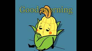 Goog morning