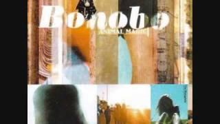 Bonobo - Silver