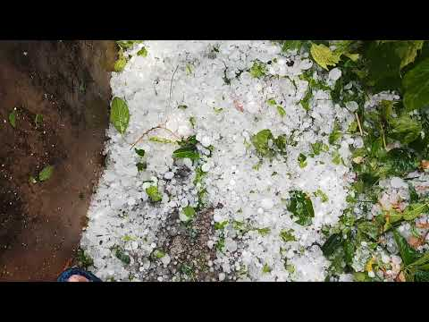 Xxx Mp4 Heavy Rain Hailstones Fall In Keonjhar 23 April 2018 Video No 56 3gp Sex