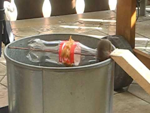Eimerfalle für Mäuse Bucket trap Alive after Coke