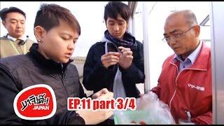 MAJIDE JAPAN : EP11 - 3/4 | CHIBA ที่เที่ยว MOTHER FARM
