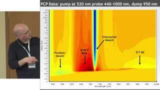 """Ultrafast processes explored by spectroscopy"", Mikas Vengris | Open Readings 2015"