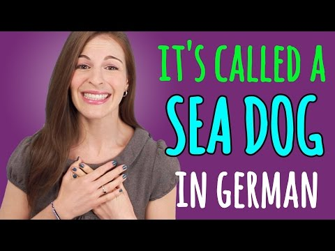 9 AMAZING German Animal Names