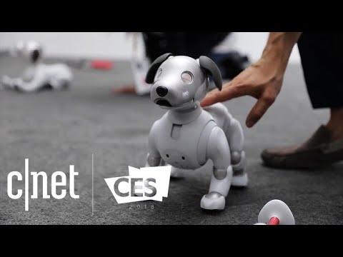 Xxx Mp4 CNET S Best Tech Of CES 2018 3gp Sex