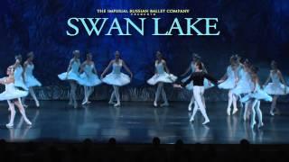 Swan Lake 30 sec 2