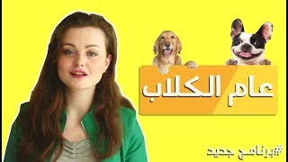 #OverQualified | الحلقة 1 - الكلاب