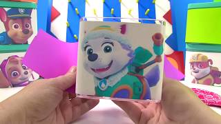 Fun Paw Patrol Who is in the Toy Surprise Box