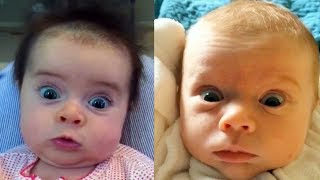 Babies React To Farts and Foot Smell